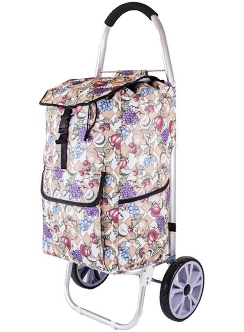 La Rochelle Deluxe 2 Wheel Shopping Trolley with Front and Side Pockets and XL Wheels Fruits Print