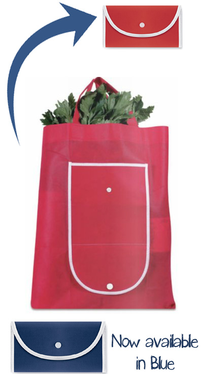Foldable Reusable Shopping Bag with Closing Buckle